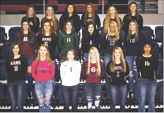 all area volleyball
